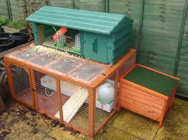The rabbit hutch where the quail live