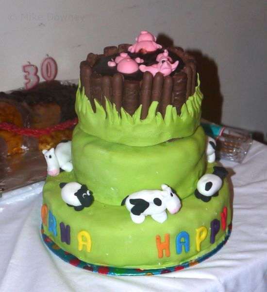 Farmyard Cake
