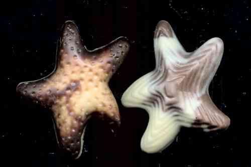 chocolate starfish