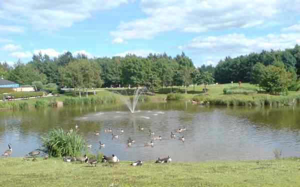 Stafford Services Lake